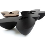 Quark Wood - Walnut and Black Wenge – 3 and 6 elements